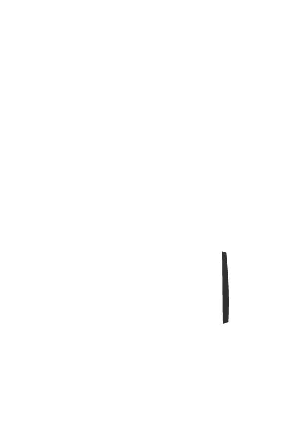 Samsonite Rythum Duffle/Wh 78cm  Graphit